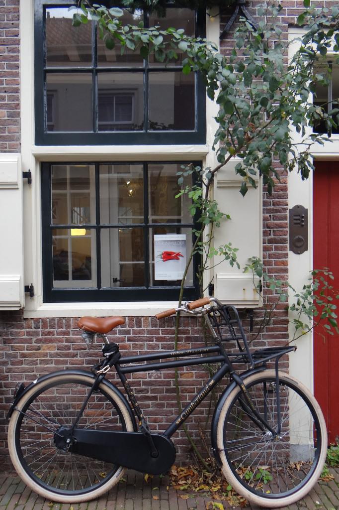 NETHERLANDS6